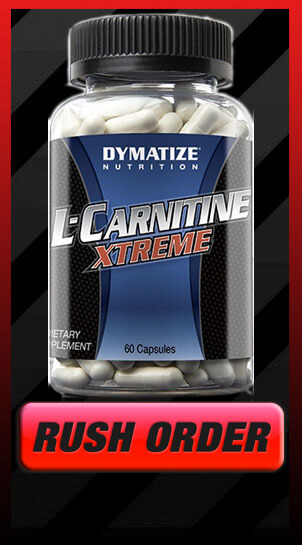 l carnitine xtreme muscle builder archives muscle building review. Black Bedroom Furniture Sets. Home Design Ideas