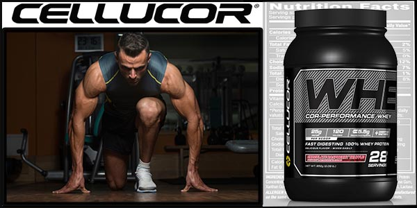 Cellucor Protein Reviews
