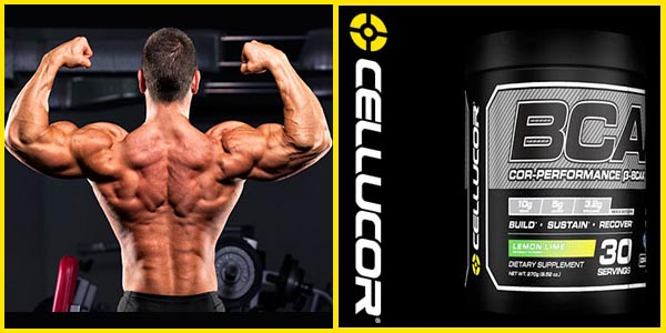 Cellucor BCAA Amazon
